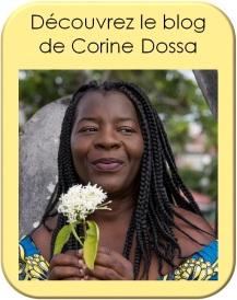 bonus-webinaire-blog-corine